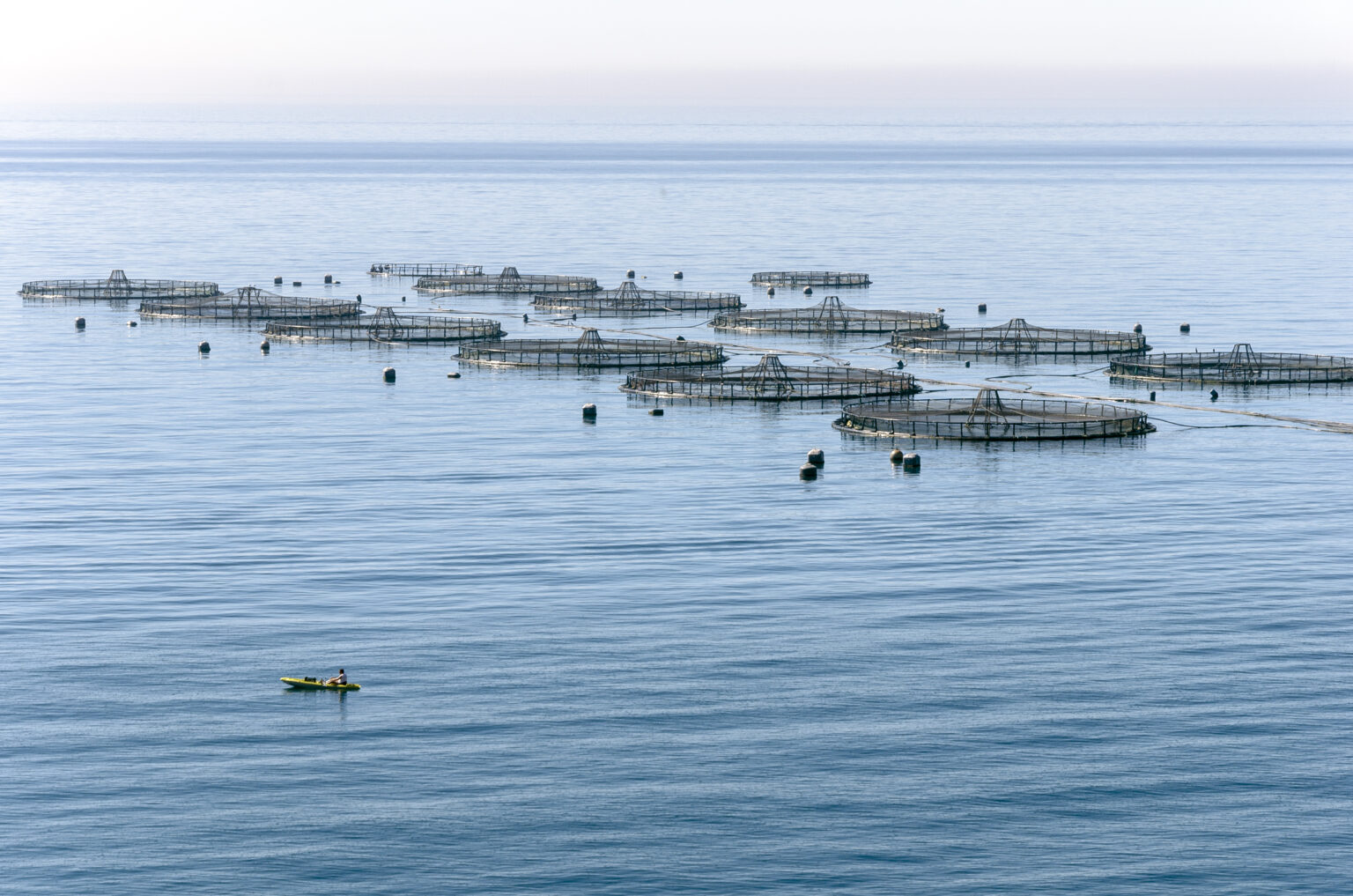 Fisherman in an aquaculture area in Almería