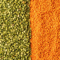 Background with Small orange and green lentils seeds of annual legume plant, they are rich in vegetable protein.