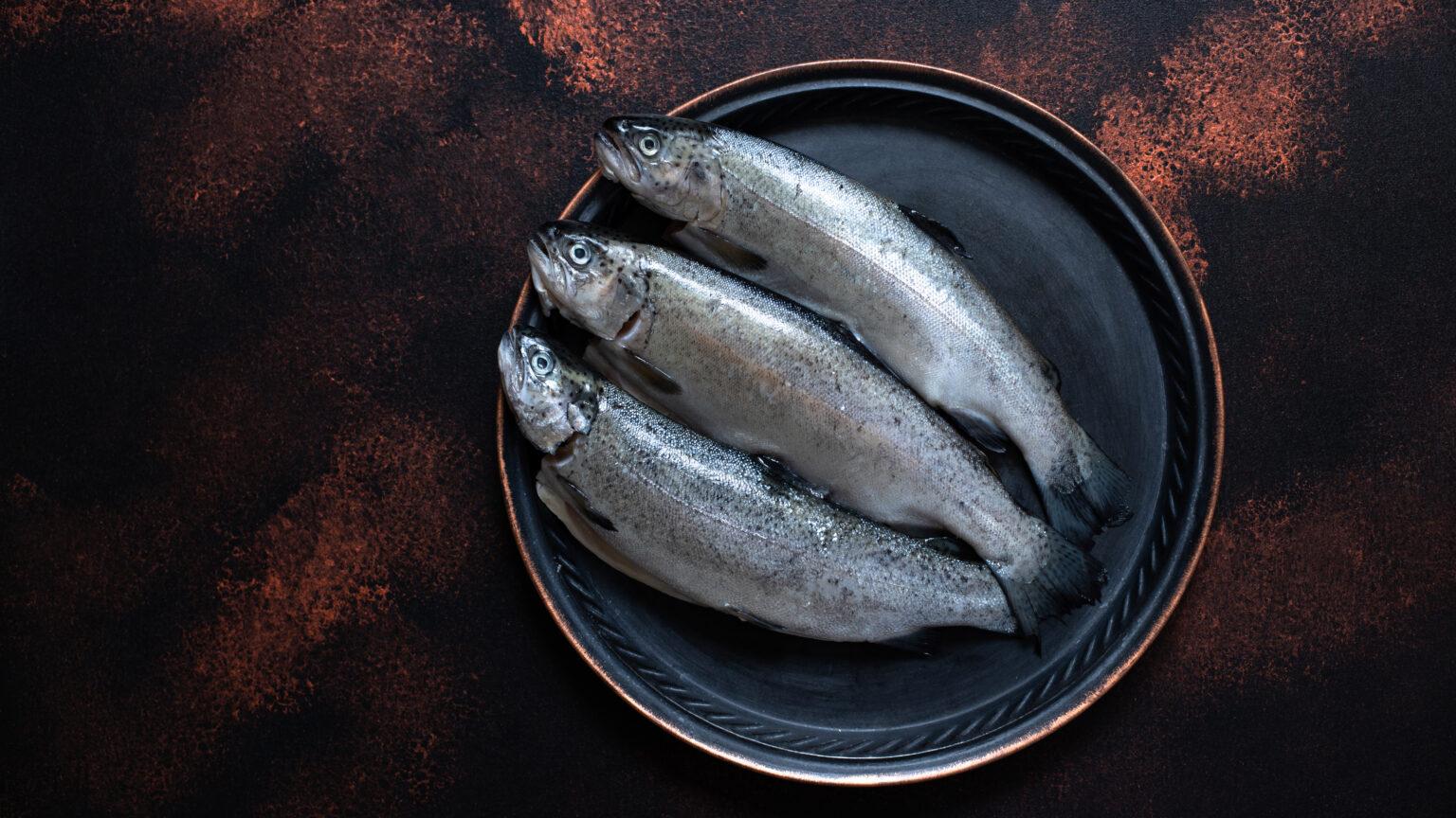 three-fresh-raw-trouts-vintage-plate-rustic-dark-background-tasty-fish-ingredient-healthy-dinner